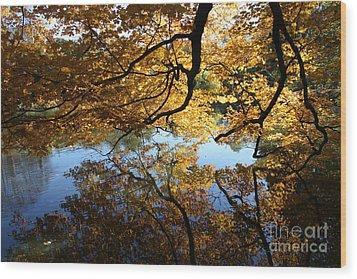 Reflections Wood Print by John Telfer