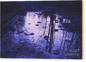 Reflections Wood Print by Marianne NANA Betts