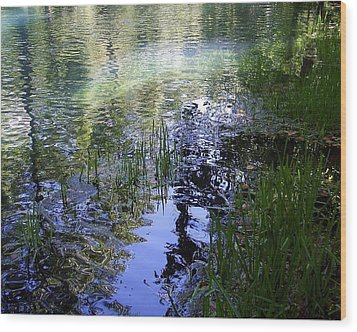 Wood Print featuring the photograph Reflections  by Mary Wolf