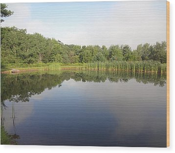 Wood Print featuring the photograph Reflections Of A Still Pond by Michael Porchik