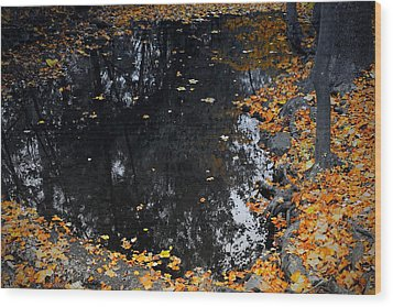 Wood Print featuring the photograph Reflections Of Autumn by Photographic Arts And Design Studio
