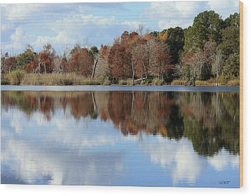 Reflections Of Color Wood Print by Debra Forand