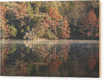 Reflections Of Fall Wood Print by Cindy Rubin
