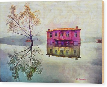 Reflections Of Illusions Wood Print by George Rossidis