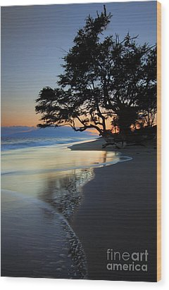 Reflections Of One Wood Print by Mike  Dawson