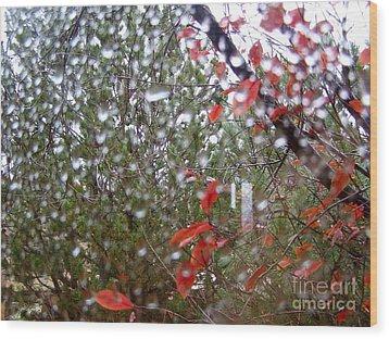 Reflections Of Rain Wood Print