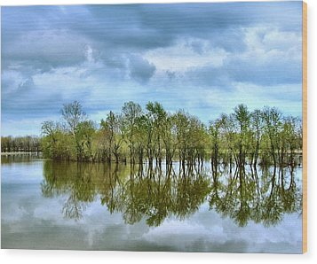 Reflections Of Spring Wood Print by Julie Dant