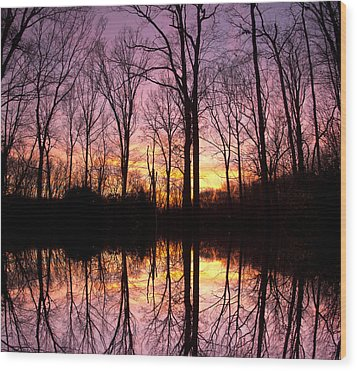 Reflections Of The Day Wood Print by Daphne Sampson