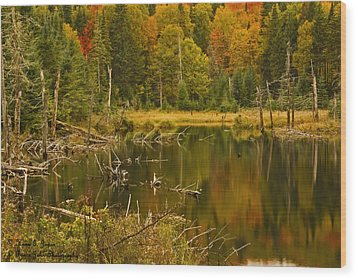 Reflections Of The Fall Wood Print