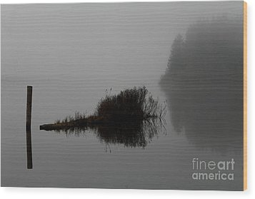 Reflections On A Lake Wood Print by Rich Collins