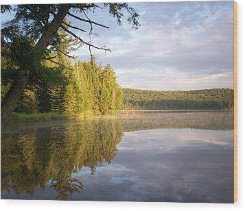 Reflections On Canisbay Lake Wood Print