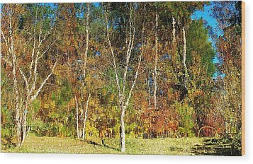 Wood Print featuring the photograph Reflections On Fall by Ludwig Keck