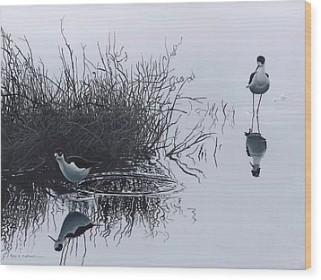 Reflections Wood Print by Peter Mathios