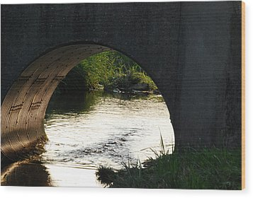 Wood Print featuring the photograph Reflections by Ramona Whiteaker