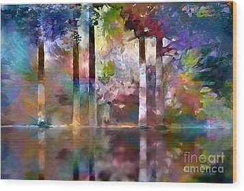 Reflections Wood Print by Ursula Freer