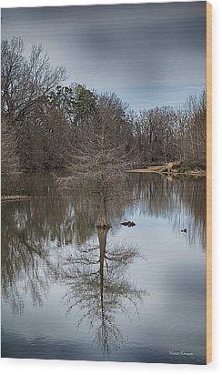 Wood Print featuring the photograph Reflections by Yvonne Emerson AKA RavenSoul