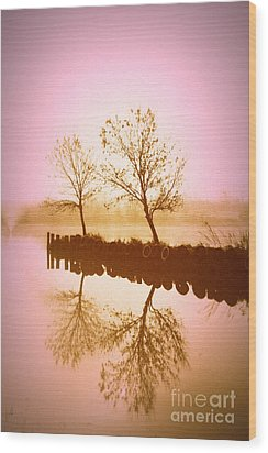 Wood Print featuring the photograph Reflective Glow by Julie Lueders