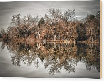 Reflective Morning Wood Print by James Barber