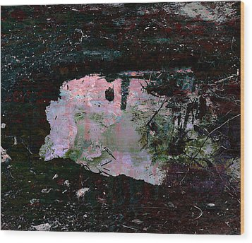 Reflective Skylight On A Small Pond Of Water # 1 Wood Print by Miguel Conesa Osuna