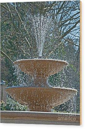 Refreshing Fountain Of Water In Sunshine Wood Print by Valerie Garner