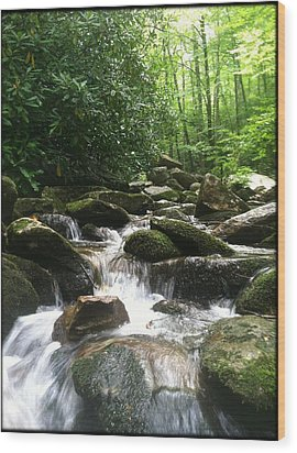 Refreshing Waters Wood Print