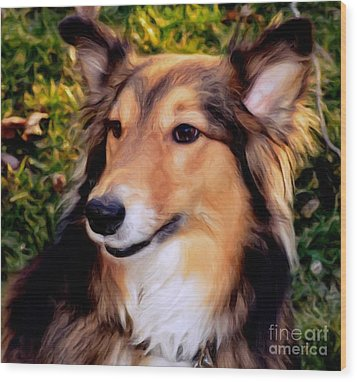Dog - Collie - Regal Shelter Dog Wood Print by Luther Fine Art