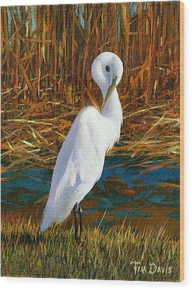 Regal White Wood Print by Tim Davis