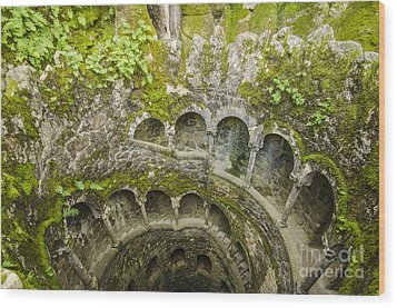Regaleira Initiation Well 2 Wood Print