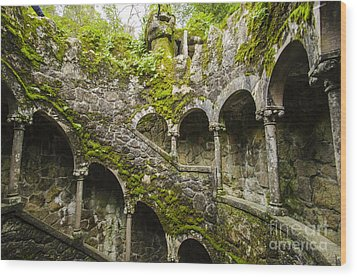 Regaleira Initiation Well 4 Wood Print
