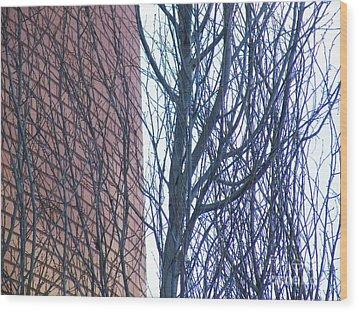 Regular Irregularity  Wood Print by Brian Boyle