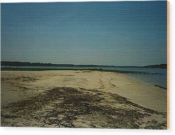 Wood Print featuring the photograph Rehoboth Bay Beach by Amazing Photographs AKA Christian Wilson