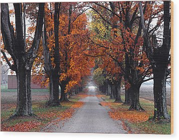 Reid's Orchard Drive Wood Print by Wendell Thompson