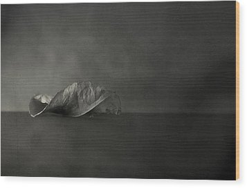 Reincarnate Wood Print