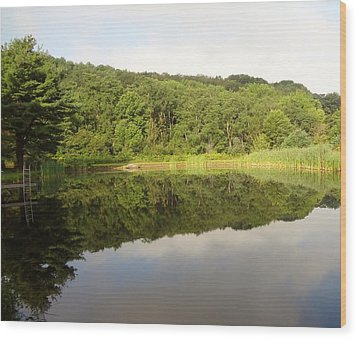 Wood Print featuring the photograph Relaxation by Michael Porchik