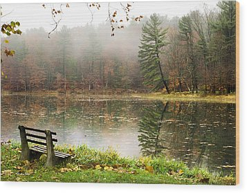 Wood Print featuring the photograph Relaxing Autumn Beauty Landscape by Christina Rollo