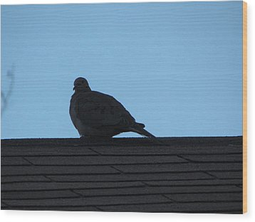 Relaxing On The Roof Wood Print by Rickey Rivers Jr