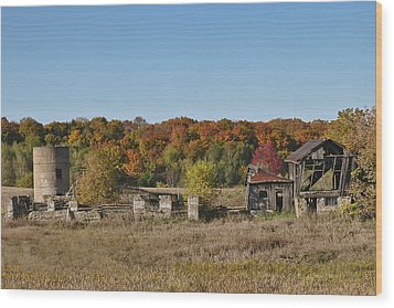Wood Print featuring the photograph Relics Of The Past by Gary Hall