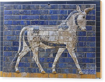 Relief From Ishtar Gate In Babylon Wood Print by Robert Preston