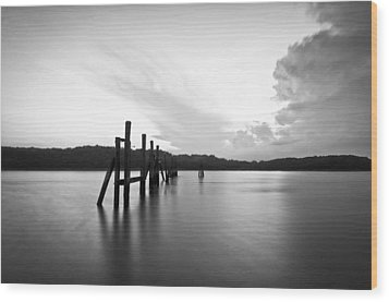 Remains Wood Print by Lee Costa