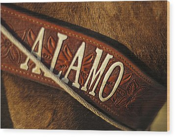 Wood Print featuring the photograph Remember The Alamo by Amber Kresge