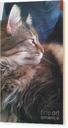 Wood Print featuring the photograph Remembering Bo by Jacqueline McReynolds
