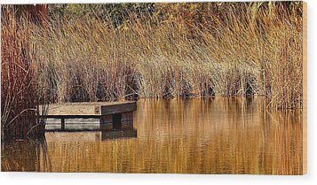 Wood Print featuring the photograph Remembering Summer Times by Elaine Malott