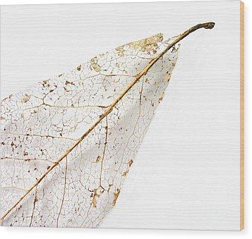 Remnant Leaf Wood Print by Ann Horn