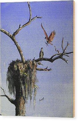 Repairing The Nest Wood Print by Sam Sidders