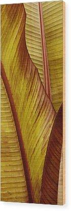 Repose - Leaf Wood Print by Ben and Raisa Gertsberg