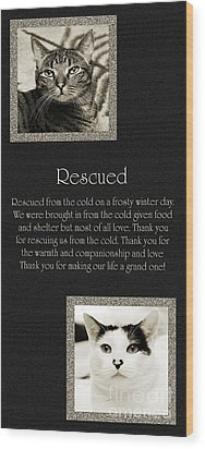 Rescued Wood Print by Andee Design