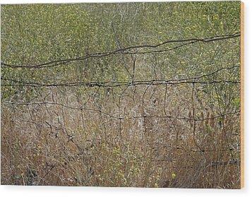 Resonate Wood Print by Viktor Savchenko