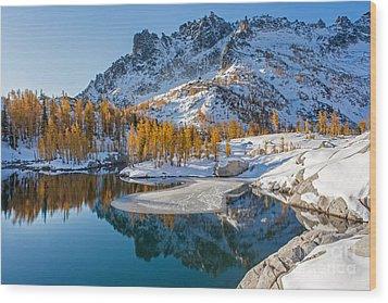 Resplendent Alpine Autumn Wood Print by Mike Reid