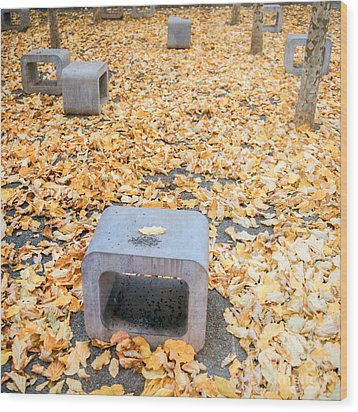 rest in fall IV Wood Print by Hannes Cmarits
