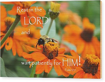 Rest In The Lord Wood Print by Barbara Stellwagen